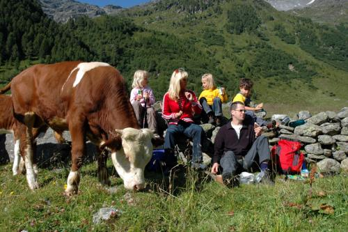 Familienrast beim Wandern Sommer osttirol werbung